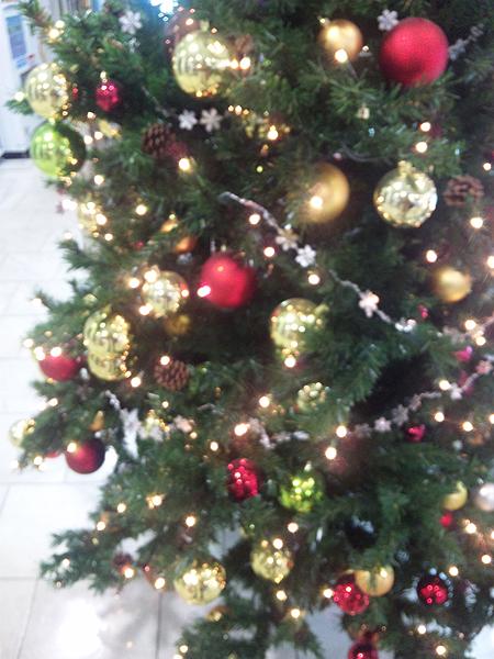 tree1205.jpg