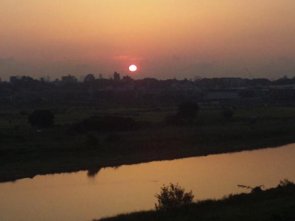 2012年5月24日朝日 多摩川