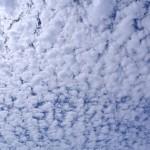 平成24年8月16日 うろこ雲