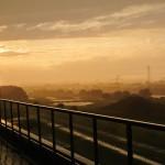 2014年7月11日 多摩川