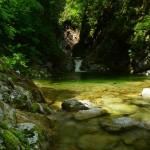 2014/05/23 登山部始動!のはずが・・・お預け! 滝めぐりツー その1 笹子峠から尾白川渓谷