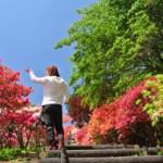 2013/05/02 金曜快晴の茨城縦横断wツー その1 笠間のつつじ園