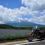 2014/6/13 月刊富士山ぷちっと散歩ツー その4 忍野から道志そして修行