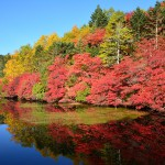 2014/9/28 赤・赤・赤・3年越しの絶景白駒池