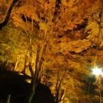 2014/11/13-14極寒の初尽くし西行ツーリング その3 香嵐渓のライトアップ