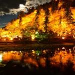 そうだ仕事のついでに(←ココ大事)京都に行こう その3 1年越しの香嵐渓のライトアップ