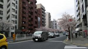 明治通り(天現寺橋~渋谷方面)