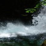 西沢渓谷で苔めぐりとSUUNTO