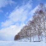 初めての冬の北海道 2018/2/16 美瑛~十勝川温泉~帰郷
